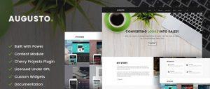 וורדפרס עבור מעצבי אתרים
